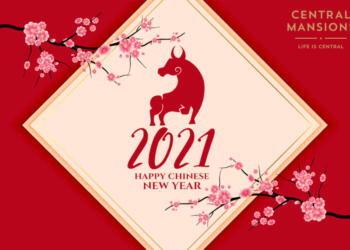 Happy Chinese New Year 恭喜发财!